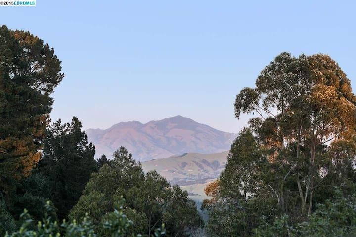Oasis with Views of Mt. Diablo!