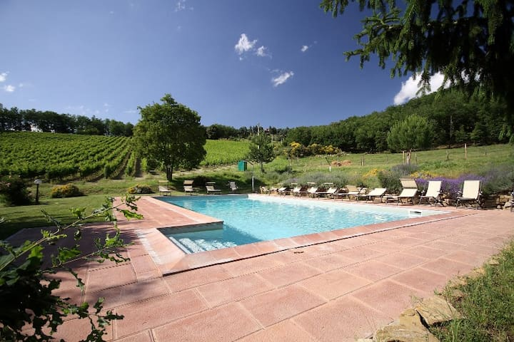 Farmhouse near Florence - Giardino - Pontassieve - Apartament