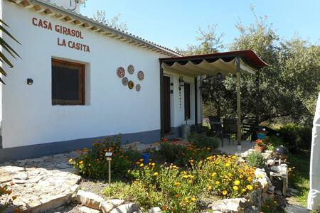 Charming & Cozy Casa Girasol
