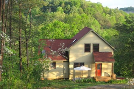 Want TOTAL privacy near Asheville?? - Alexander - บ้าน