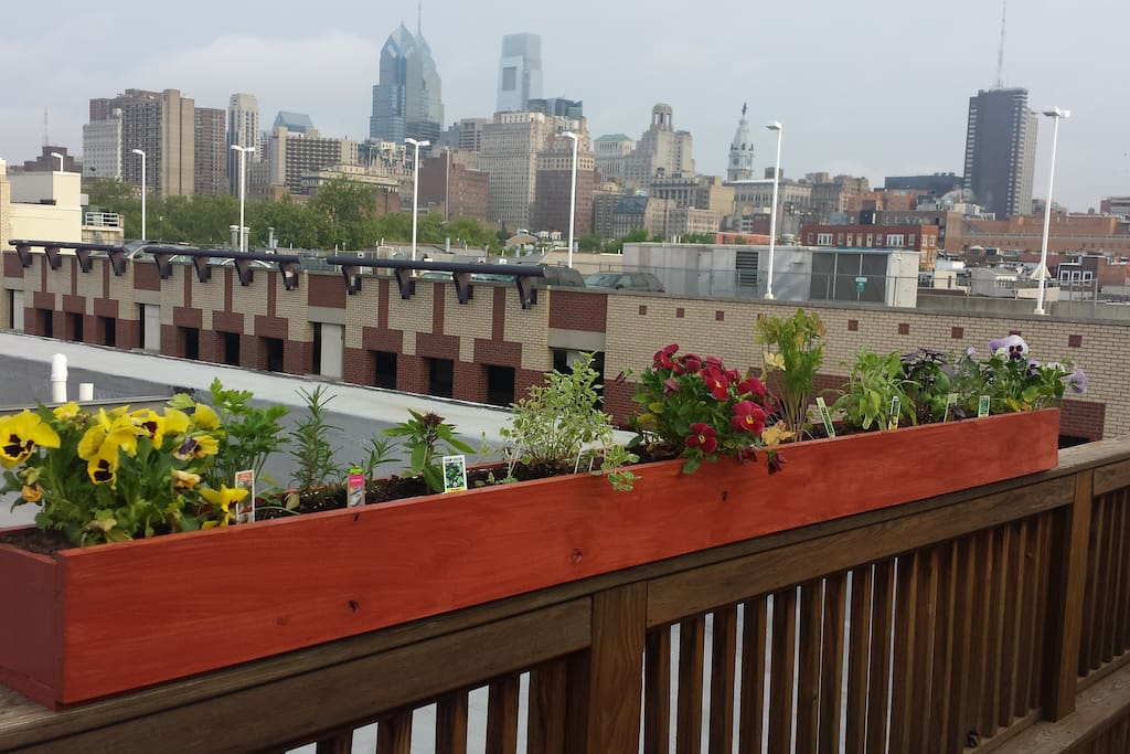 Beautiful skyline view of center city from private rooftop deck