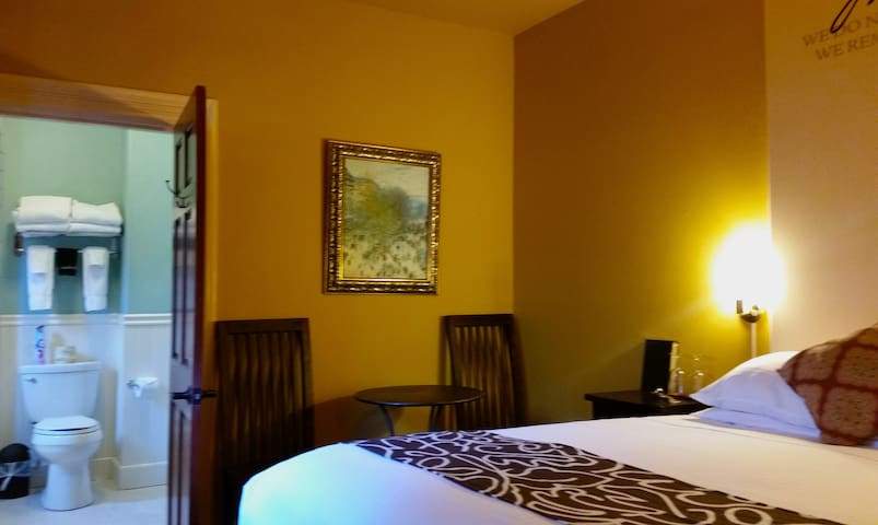 Small 1 room studio with queen luxury bed and private bath.