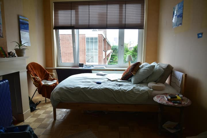 Lovely room in a lovely neighborhood in the Hague
