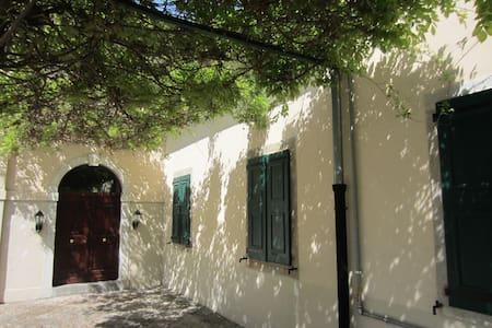 Ala di prestigiosa villa - Corno di Rosazzo