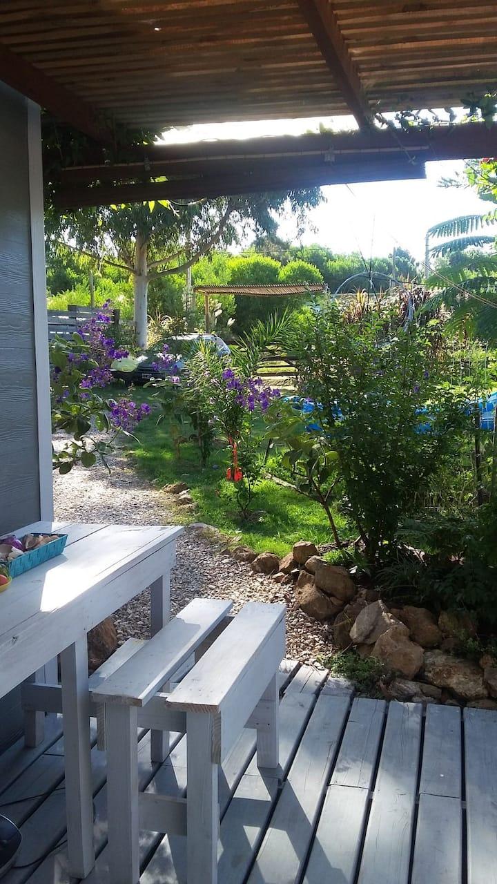 """""""Agua"""",relax house en La Pedrera!!"""
