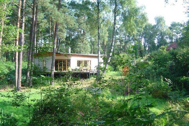 Zimmer im Grünen mit leckeres Frühstück - Kakenstorf - Casa