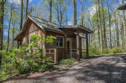Mountain Breeze Guest Cabin