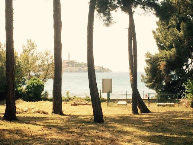App+parking, sea across the street. - Rovinj