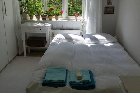 Room in the center of Copenhagen