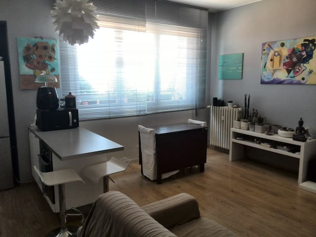 Cozy flat near Monza - Albiate - Appartement