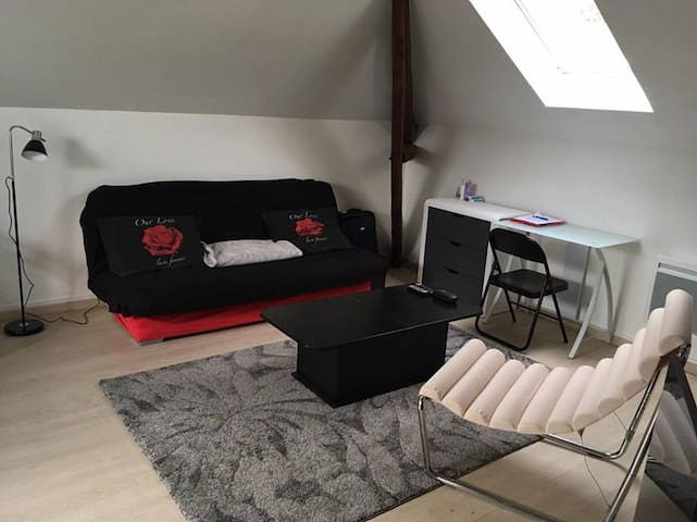 charmant studio à Orléans - Orléans - Wohnung
