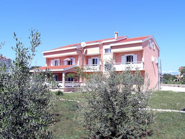 Apartment Dalmatino in Vir