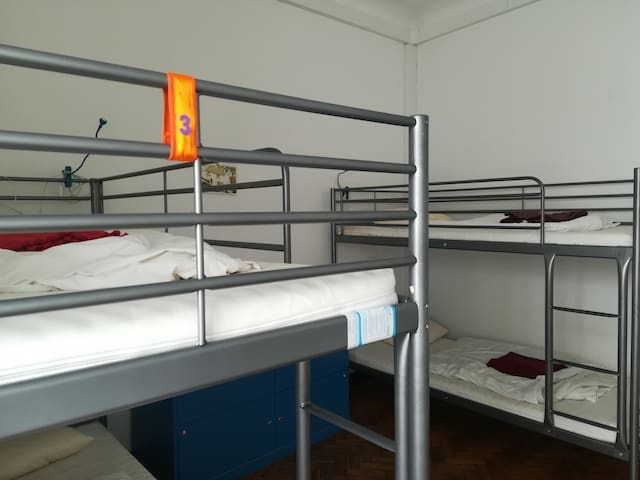 Old Évora Hostel: Bed in mixed dormitory (04 beds)