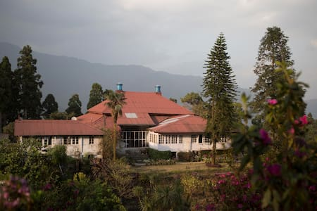 A Short Break from Reality | Goomtee Tea Estate - Mahanadi - Bungalov