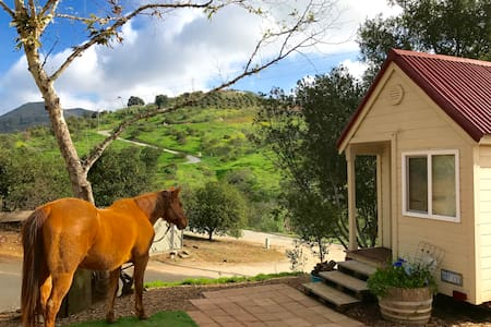 Imagine! A TINY HOUSE w TRAIL RIDING in Paradise - Fallbrook - Rumah