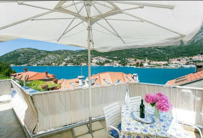 Apartment Darija Dubrovnik - Sustjepan - Apartamento