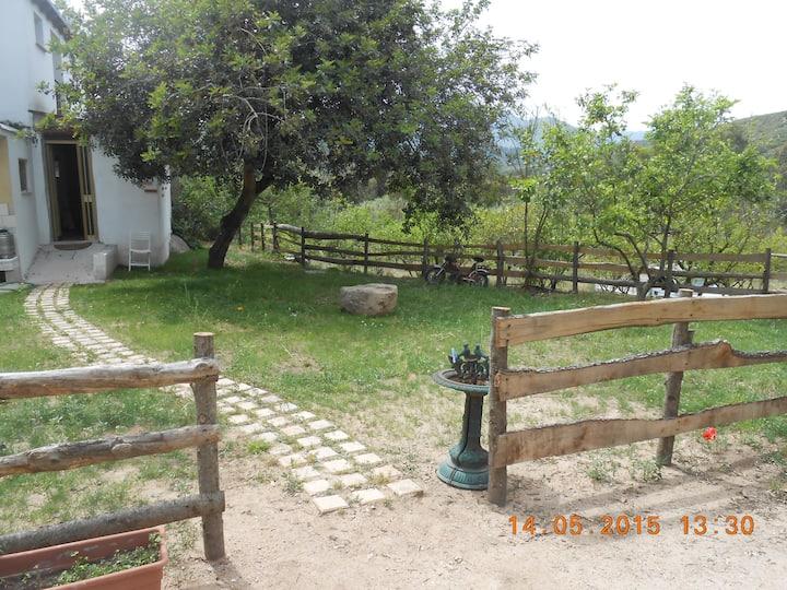 S'Ilimba and Rustic Family Rooms (quadrupla)