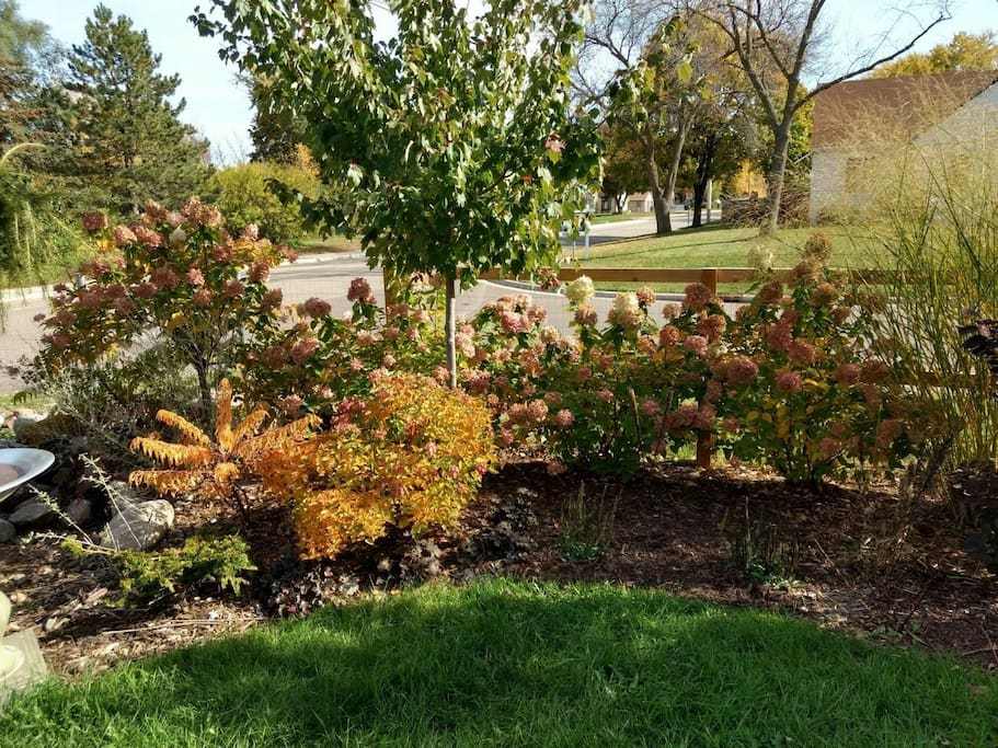Our shaded, fenced yard is a uniquely landscaped oasis for your enjoyment.