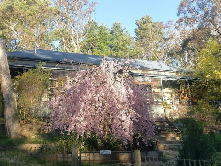 Katoomba Private Bush Retreat No.1