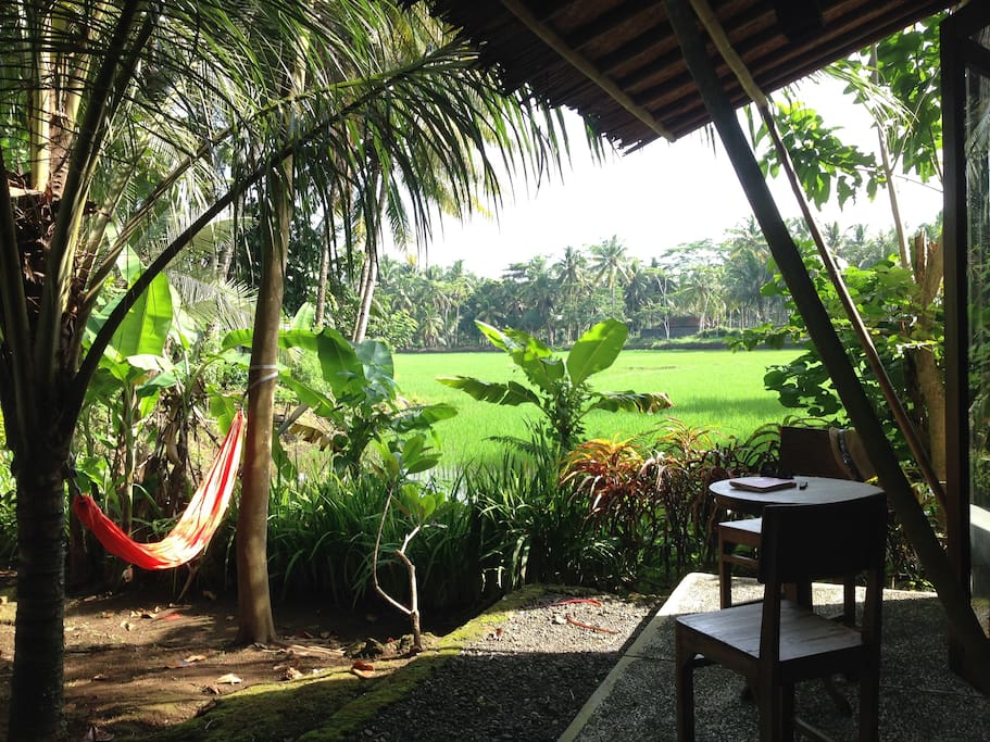 Hammock by the rice fields