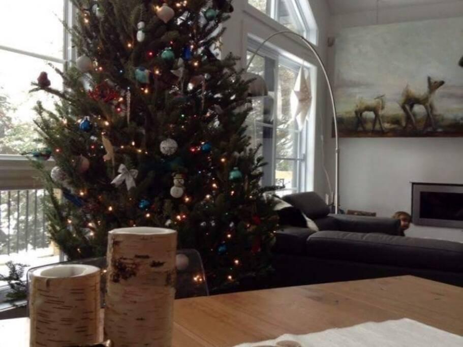 Sera décoré pour votre séjour à Noël