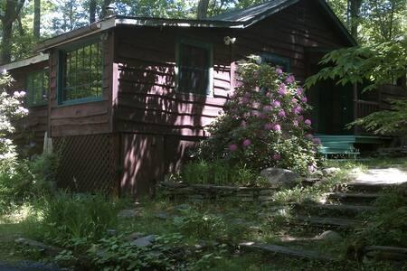 Charming Cabin on rushing stream