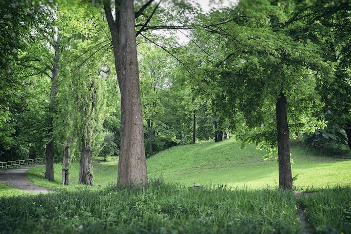 Ferienwohnung am Bienertpark - Dresden - Haus