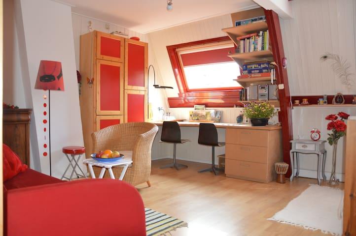 Ruime, lichte kamer nabij centrum - Utrecht - Maison