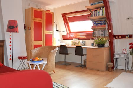 Ruime, lichte kamer nabij centrum - Utrecht