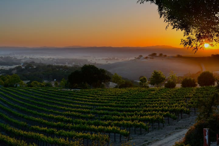 Asuncion Ridge Wine Maker's Cottage - Paso Robles