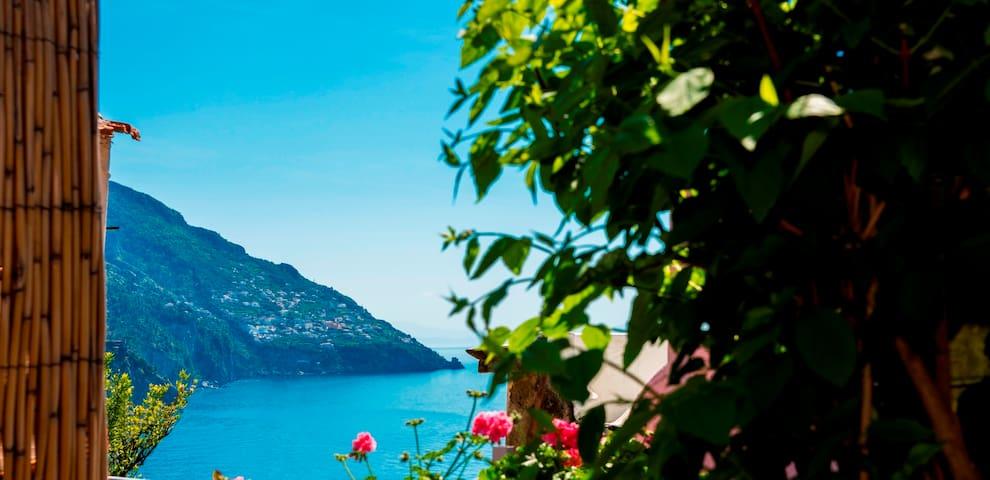 """""""Flamenco Rosa"""" In Positano - Positano - Ev"""
