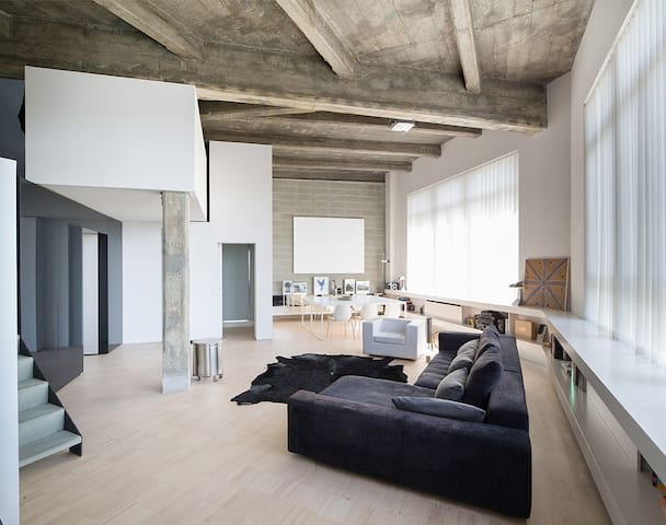 LOFT in TORINO  with Roof Terrace