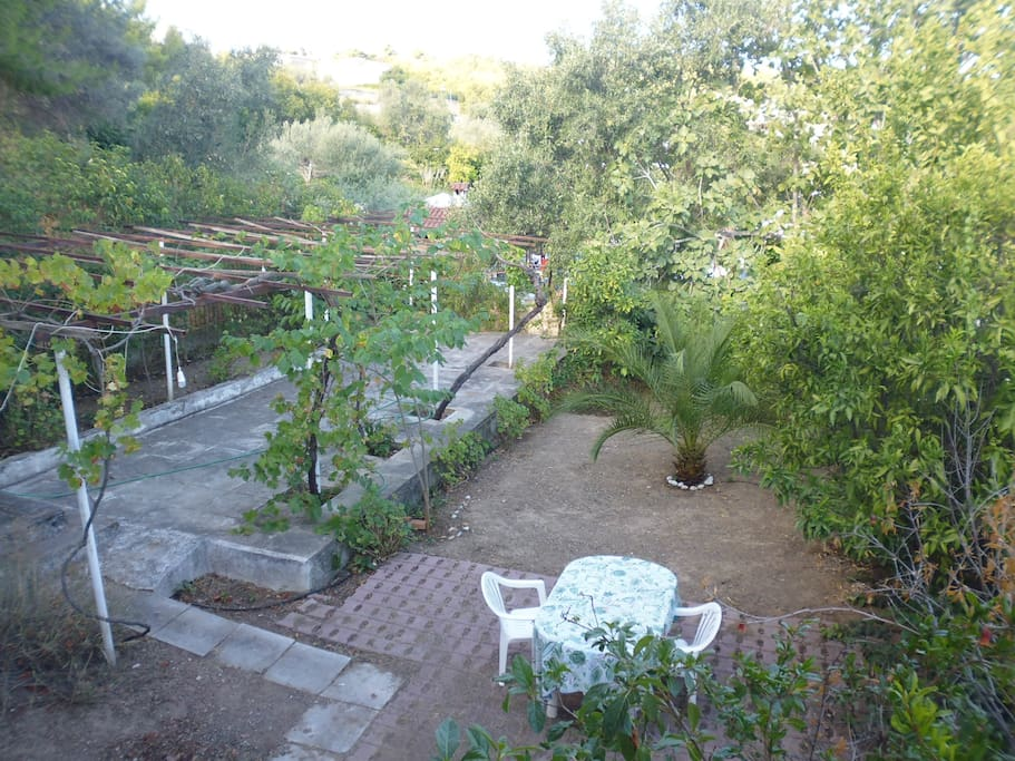 large garden for children to play