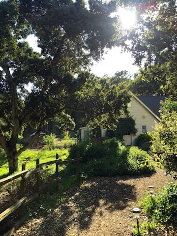 Remarkable Reader's Cottage in the Country - Watsonville - Dom