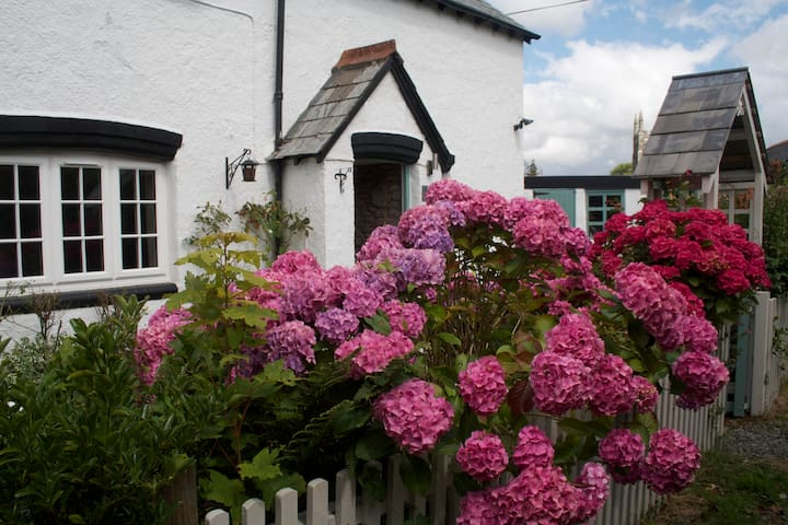 Quiet country cottage - Dartmoor hc - Brentor - Huis