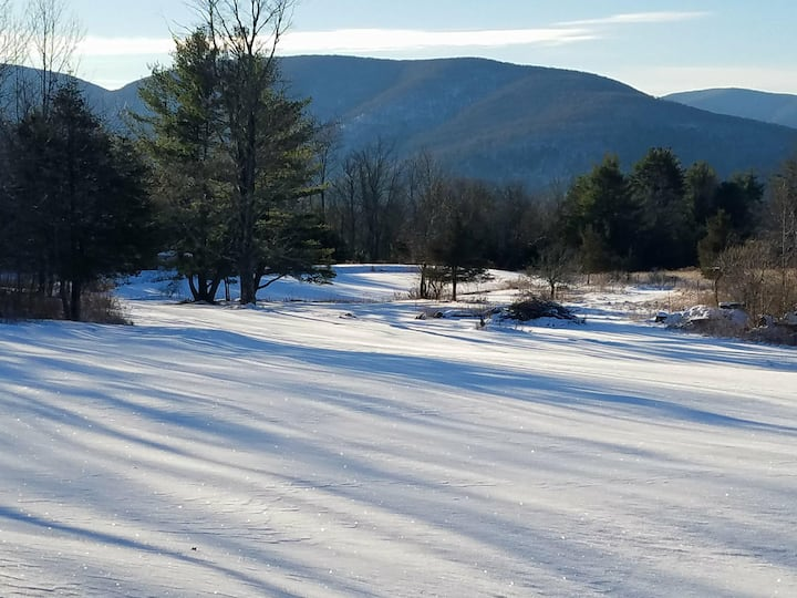 6 Acres w/Hot Tub, Fire Pit, Pond, Close to Skiing