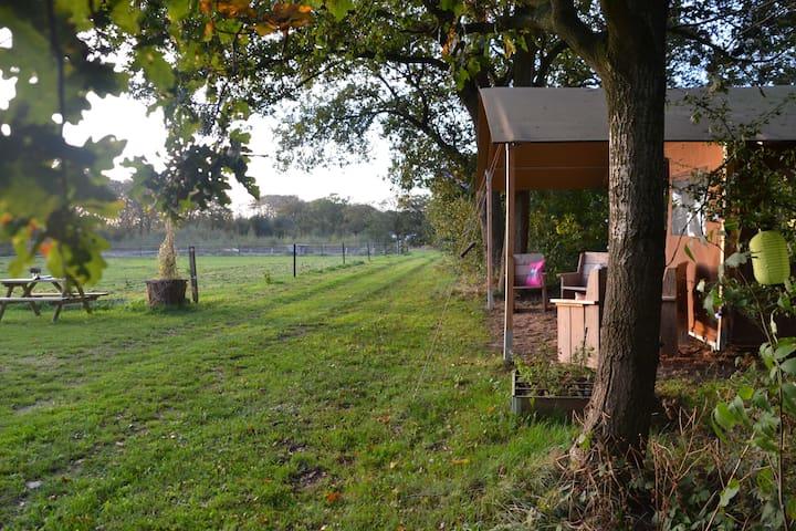 Hippe safaritent op unieke locatie - Oudemirdum - 帳篷