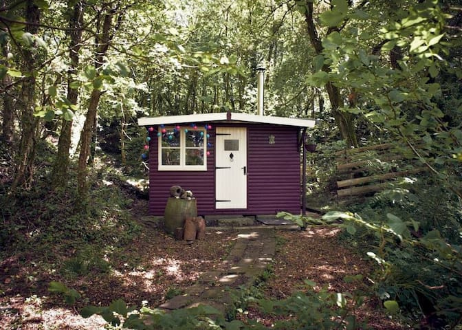 Cabin in the Woods within Dartmoor - Plymouth