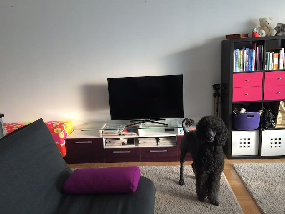 Full HD TV and lots to read too!