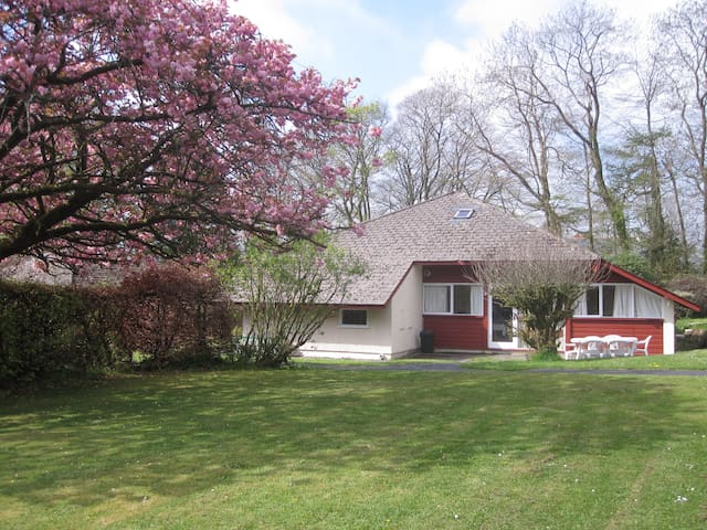 Orchard Lodge - Llanteg - Chalet