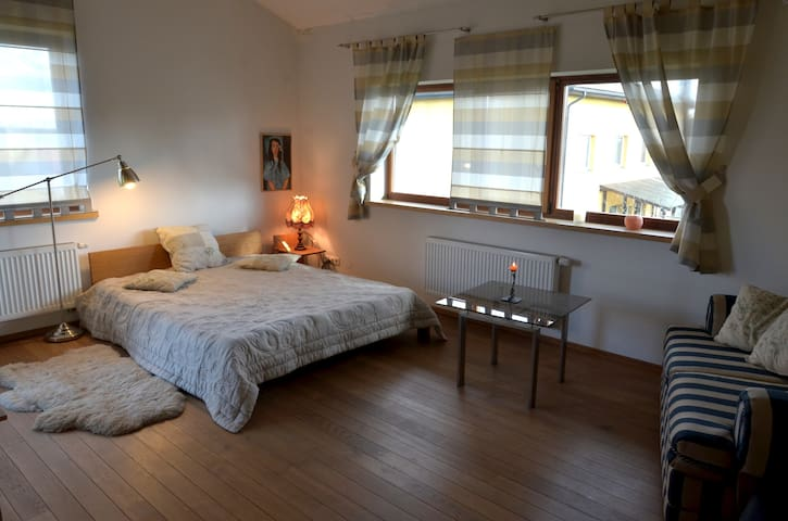 Charming room on city outskirts - Vilnius - บ้าน