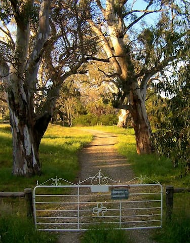 Welcome to our beautiful property and our newest accommodation venture Boongarrie Luxury Tent.