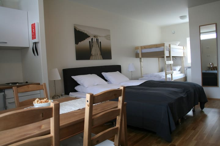 South Central Motel Apartment - Selfoss - Daire