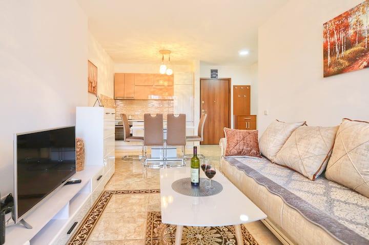 One Bedroom Apartment CVIJETA
