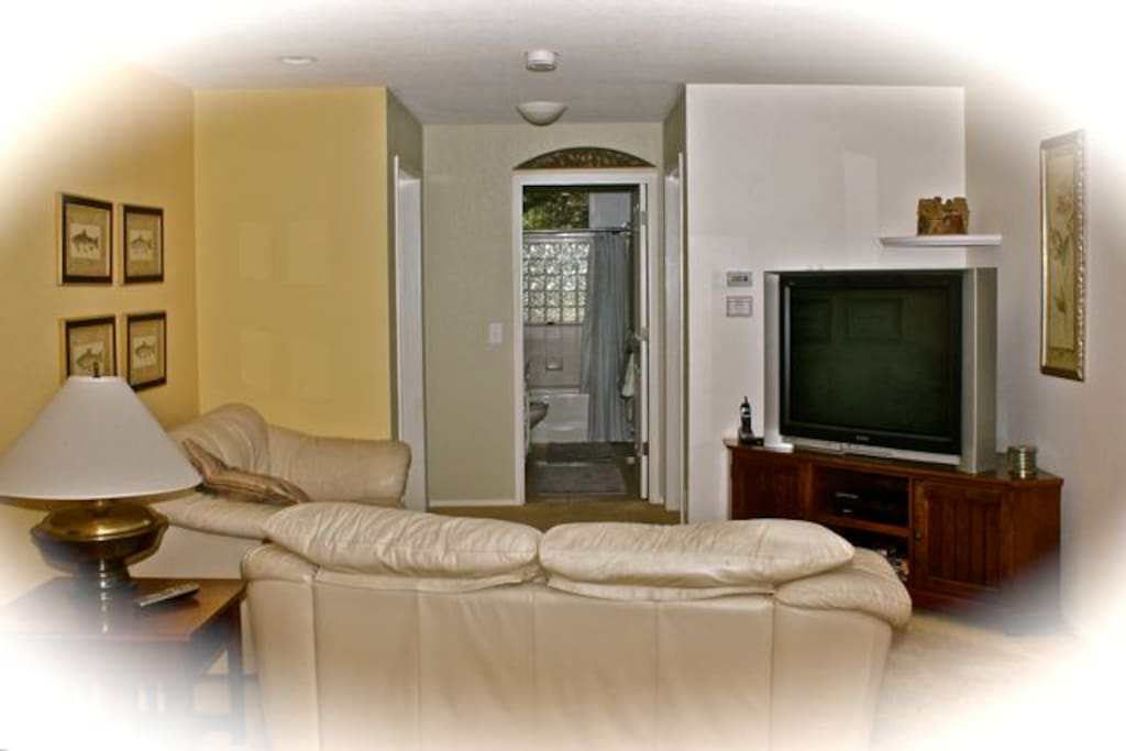 """Living Room with 48"""" HDTV"""