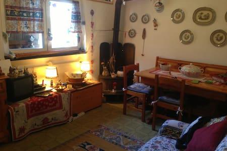 Appartamento in montagna -piste sci ogni comfort - Santo Stefano D'aveto