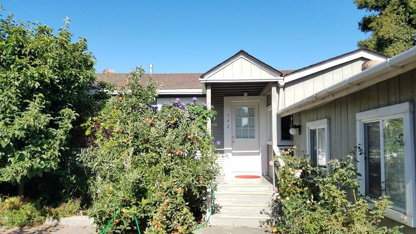 An Orchard Style Home near BART and UC Berkeley