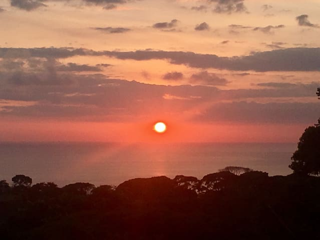 Ocean View Room - Casa Nautika Retreat - Dominical - Bed & Breakfast