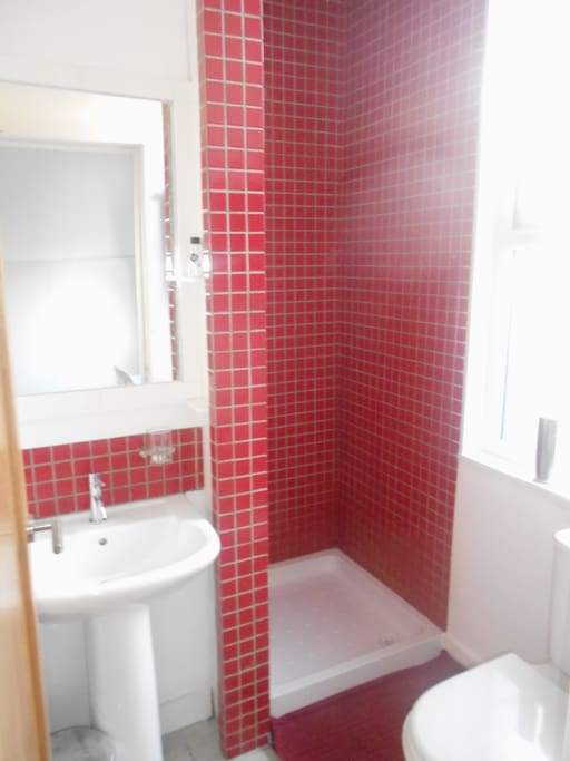 Compact shower room off bedroom