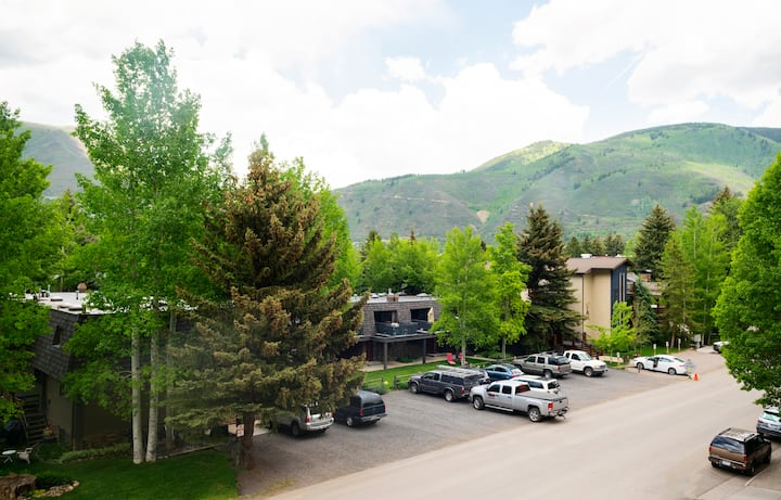 Location! 2 Bed + 2 Bath - Base of Aspen Mountain.